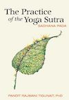 Practice of the Yoga Sutra