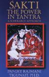 Sakti: The Power in Tantra